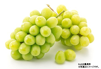 welcome_grapes